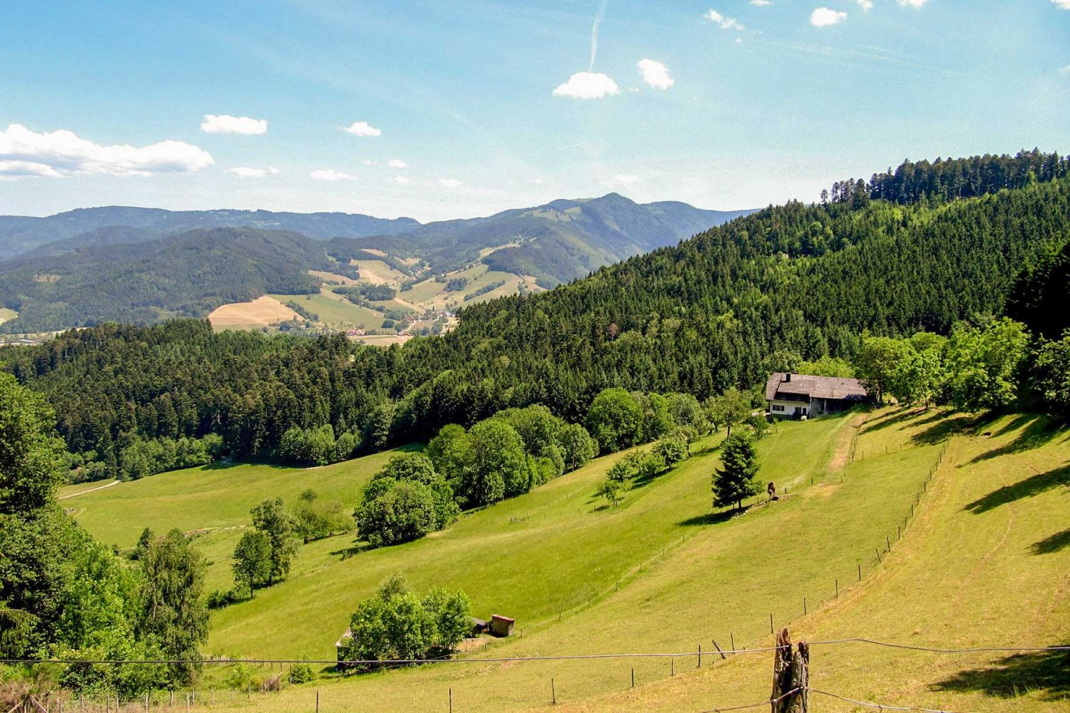 Reiseleitung Schwarzwald   Black Forest and Beyond Day Trips