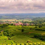 Reiseleitung Kaiserstuhl | Wine regions of Germany