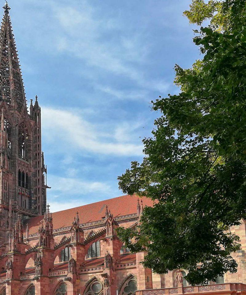 Freiburger Stadtführung auf das Wesentliche konzentriert | Freiburg Germany in 60 Minutes